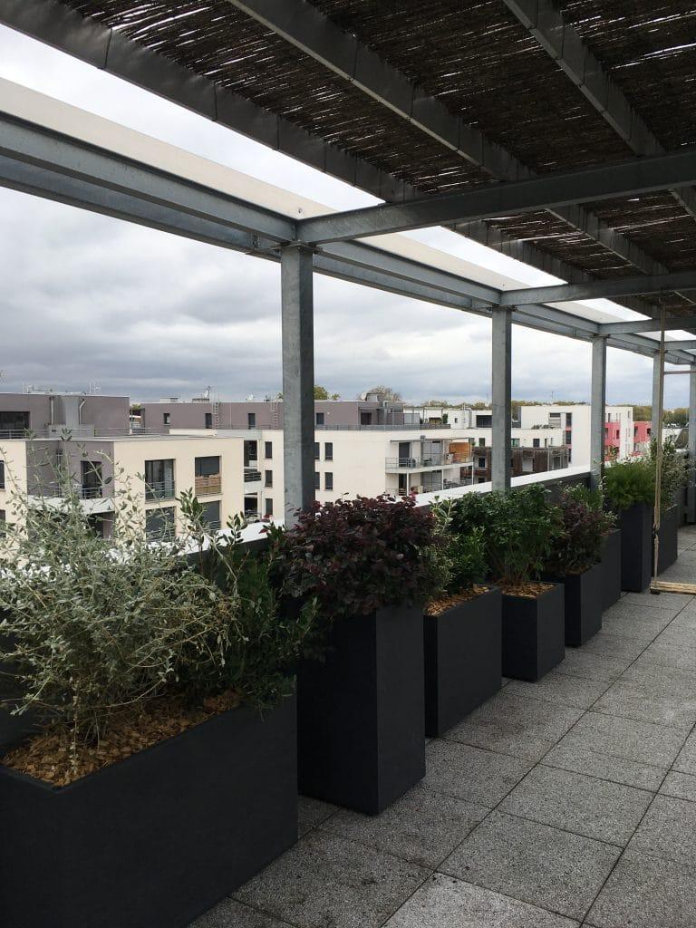 Aménagement paysagé de la terrasse