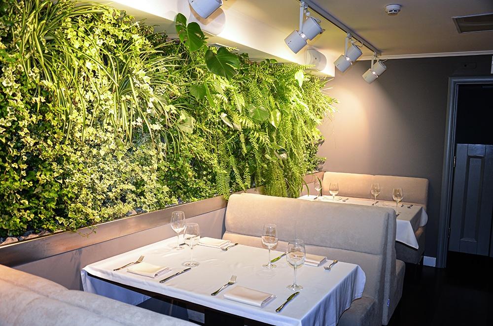 Mur végétal dans un restaurant à Toulouse