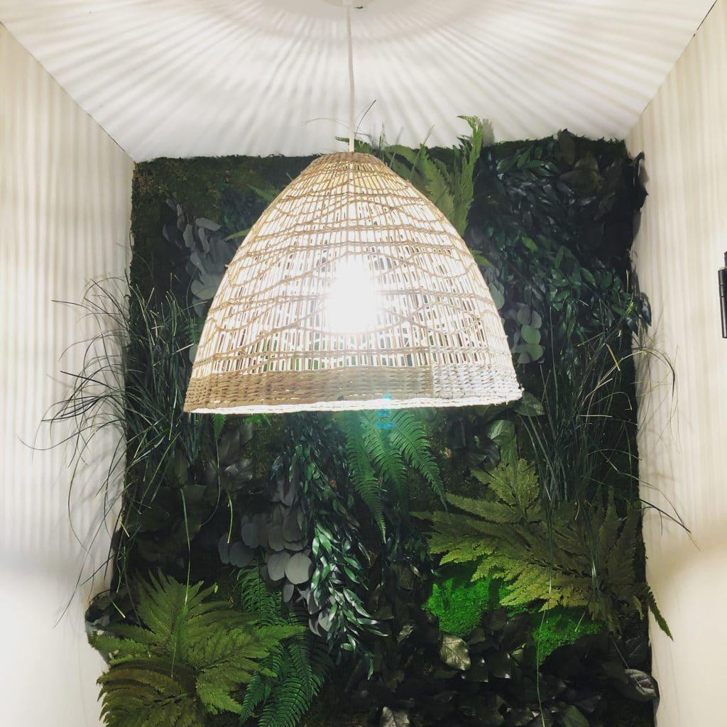 mur vegetal - tableau vegetal Toulouse